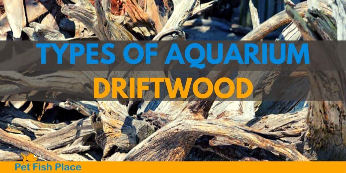Types Of Aquarium Driftwood Pet Fish Place